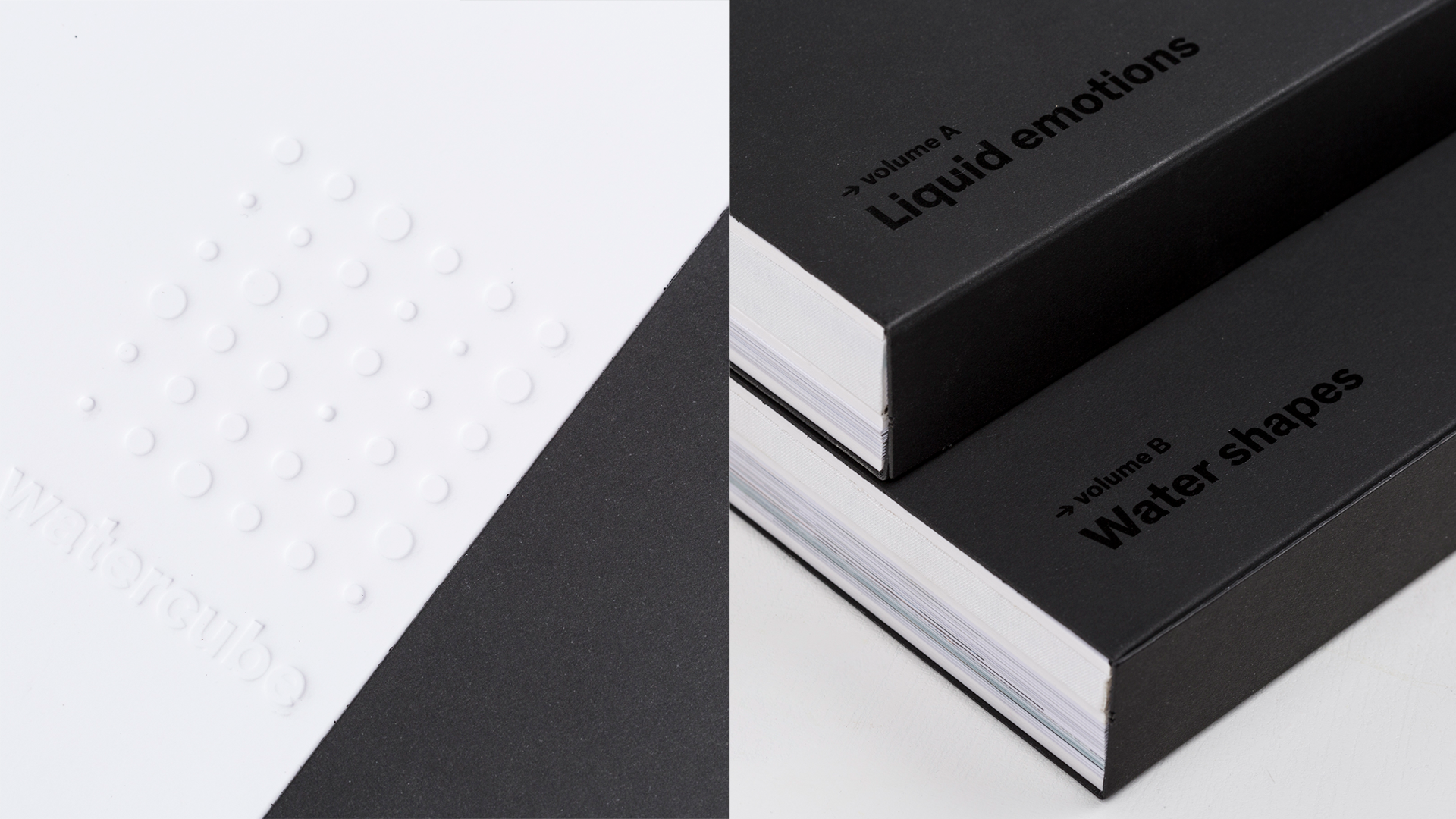 watercube book details