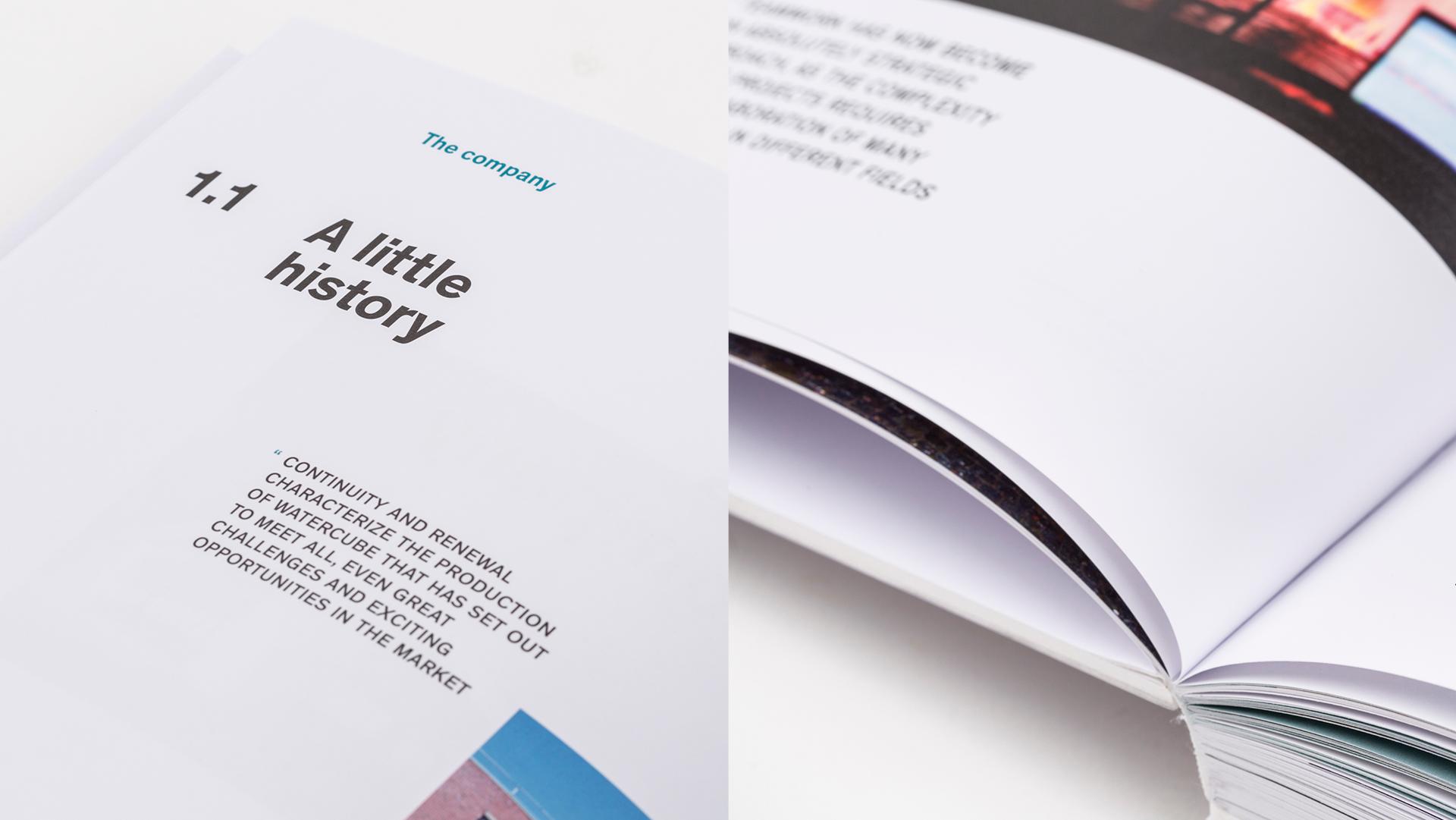 watercube book details